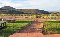 Springbok view